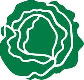 Verde da salada da alface ilustração royalty free