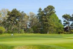 Verde de colocação com a bandeira no campo de golfe Imagens de Stock Royalty Free
