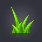 Verde de grama Fotografia de Stock Royalty Free