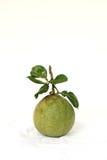 Verde de la cáscara de pomelo Fotografía de archivo