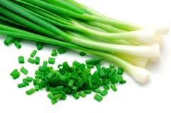 Verde de la cebolla Foto de archivo libre de regalías