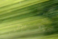 Verde de la falta de definición del fondo Foto de archivo libre de regalías