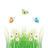 Verde de la silueta de la hierba ilustración del vector