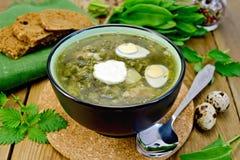 Verde de la sopa del alazán y de la ortiga con los huevos de codornices Imagenes de archivo