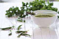 _verde de los guisante poner crema sopa Fotografía de archivo libre de regalías