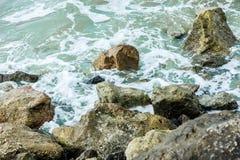 Verde de mar 2 imagens de stock