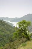 Verde de Rio Foto de Stock Royalty Free