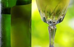 Verde de Vinho de Portugal Foto de Stock Royalty Free