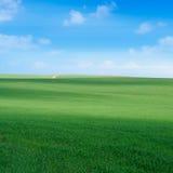 verde dei campi Fotografia Stock Libera da Diritti