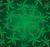 Verde del árbol de coco de la naturaleza de la hoja del ornamento del diseño del modelo del fondo Fotos de archivo