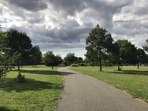 Verde del camino Fotografía de archivo