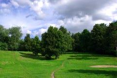verde del campo Fotografie Stock