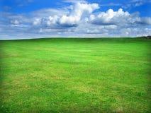 verde del campo Immagini Stock Libere da Diritti