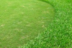 Verde del campo de golf Foto de archivo