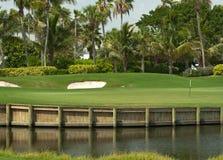 Verde del campo de golf en la Florida 2 Imagen de archivo libre de regalías