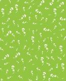 Verde del fiore Immagini Stock Libere da Diritti