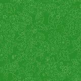 Verde del fondo della margherita Fotografia Stock