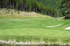 Verde del golf fotografía de archivo