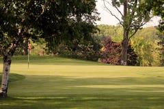 Verde del golf Imagen de archivo libre de regalías
