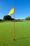 Verde del golf con el indicador Fotos de archivo