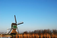 Verde del mulino a vento Fotografia Stock