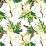 Verde del otoño y y florales herbarios blandos gráficos brillantes hermosos Imagenes de archivo