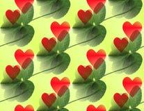 verde del trébol de la Cinco-hoja con los corazones rojos que sobreponen y diagonalmente ilustración del vector