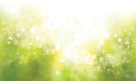 Verde del vector, fondo de la primavera ilustración del vector