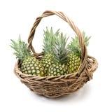 Verde dell'ananas Immagine Stock Libera da Diritti