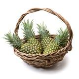 Verde dell'ananas Immagine Stock