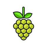 Verde dell'uva del fumetto Fotografia Stock