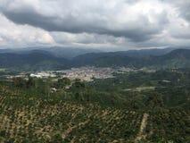 Verde della valle del caffè della Colombia fotografie stock