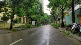 Verde después de tormentas Imagen de archivo