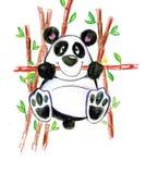 Verde di bambù sveglio animale di sorriso del bambino di divertimento del panda Fotografie Stock