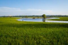 verde di erba della priorità alta del fuoco del campo lontano di dof della città fuori da poco profondo Fuoco sulla priorità alta Immagine Stock Libera da Diritti