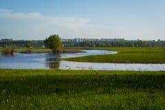 verde di erba della priorità alta del fuoco del campo lontano di dof della città fuori da poco profondo Fuoco sulla priorità alta Fotografia Stock Libera da Diritti
