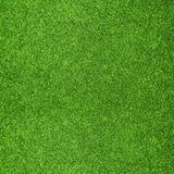 verde di erba della priorità bassa Fotografia Stock