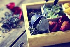 Verde di legno della rosa del tè Immagine Stock Libera da Diritti