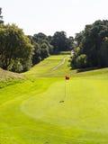 Verde do campo de golfe Imagens de Stock Royalty Free