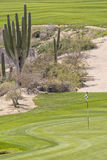 Verde do campo de golfe do deserto Fotografia de Stock Royalty Free