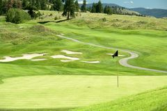 Verde do golfe Imagens de Stock Royalty Free