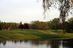 Verde do golfe Imagem de Stock