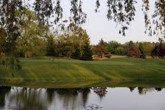 Verde do golfe Imagens de Stock