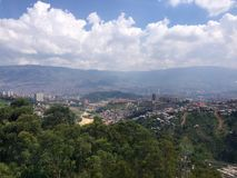 Verde do vale do café de Colômbia Imagens de Stock Royalty Free