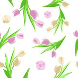 Verde do vetor do fundo da flor do teste padrão Foto de Stock Royalty Free