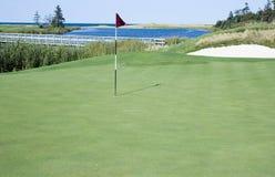 Verde e bandierina di golf fotografia stock