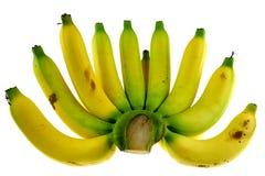 Verde e giallo della banana Fotografie Stock