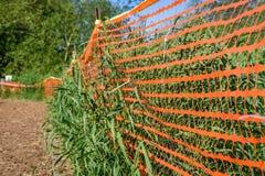 Verde ed arancio Immagini Stock Libere da Diritti