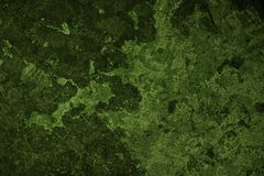 Verde floral de Grunge Fotografia de Stock Royalty Free