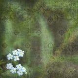 Verde floral del fondo de la vendimia Foto de archivo